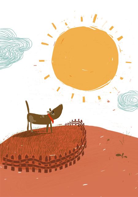 Die Sonne, Garten, Hund, Zaun
